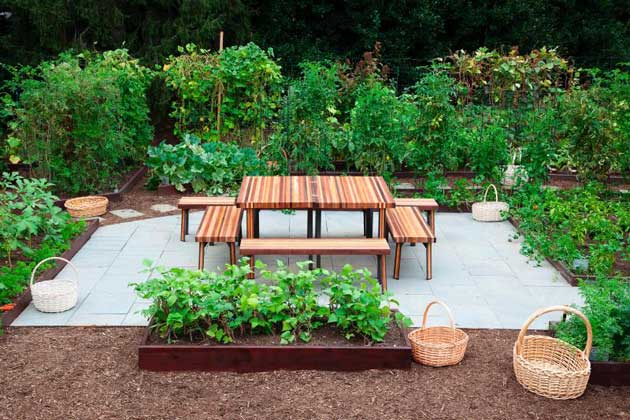 10 Things About the White House Kitchen Garden