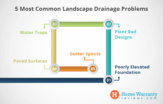 5 Most Common Landscape Drainage Problems