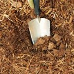 Aerating Soil