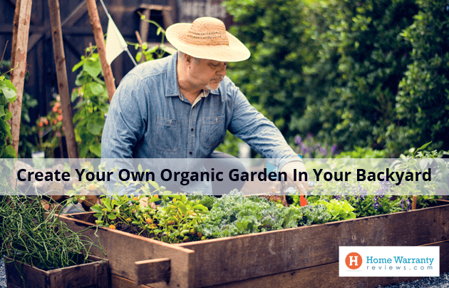 Create your own organic garden in your backyard for Design your own landscape