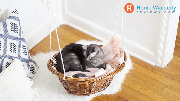 diy cat bed easy
