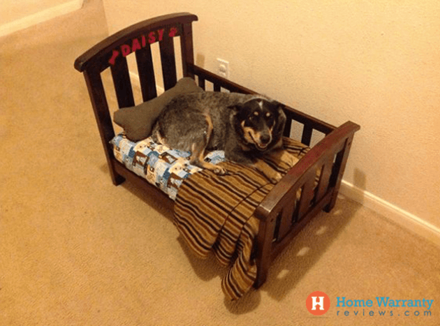 DIY crib into dog bed