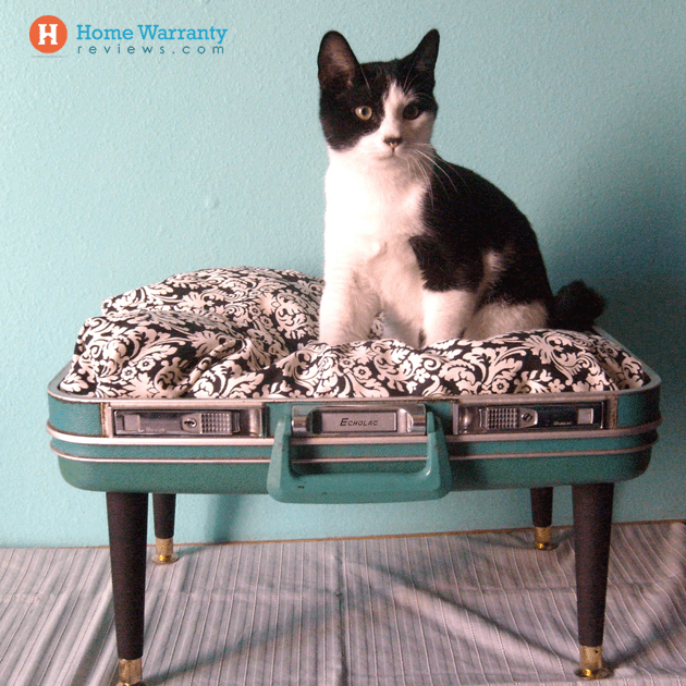 DIY suitcase pet bed