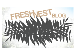 Fresh Nest Blog