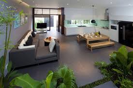Greenery inside apartment