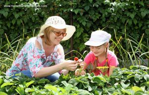 Health benefits and peace of mind from Gardening and home warranty