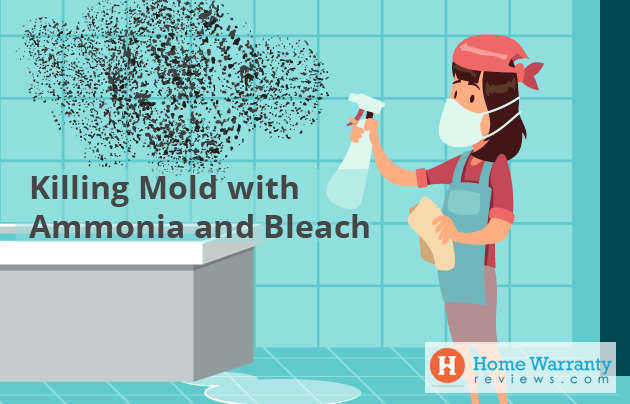 Killing Mold with Ammonia and Bleach