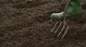 Preparing soil
