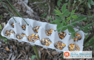 Recycled Material Bird Feeders