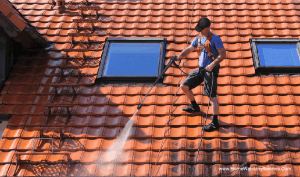 Top tips to clean your roof