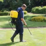 Treating mosses and weeds