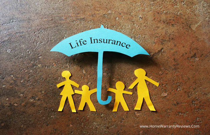 What Kind of Life Insurance Policy Serves Your Needs?