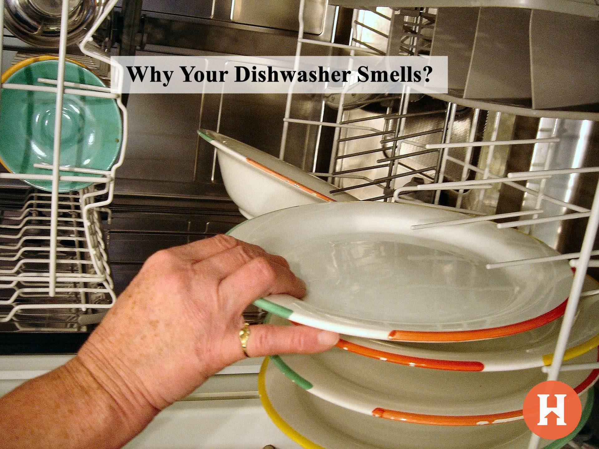 Why Your Dishwasher Smells?