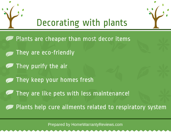 Decorate Your House With Plants