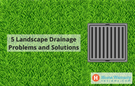 5 Landscape Drainage Problems and Solutions