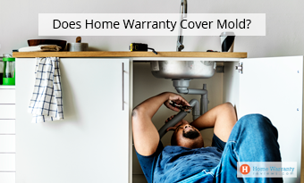 Does Home Warranty Cover Mold?